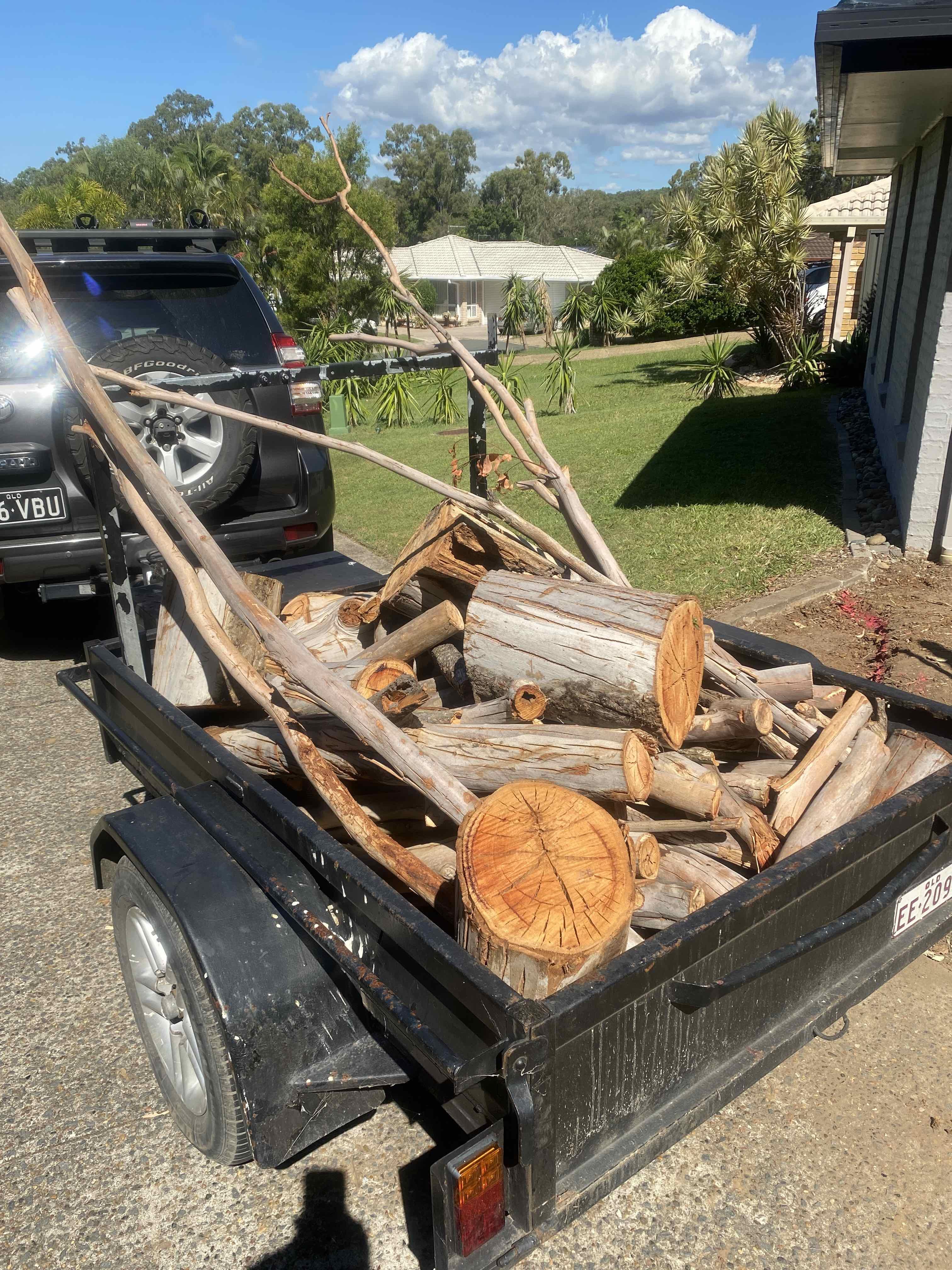 Covid_firewood.jpg